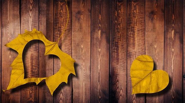 Heart, Leaf, Love, Wood, Autumn, Fall Foliage