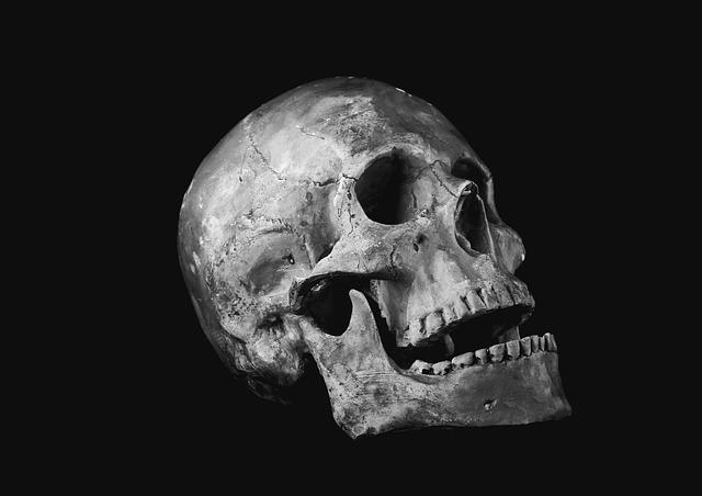 Skull, Helplessness, Bone, Scull