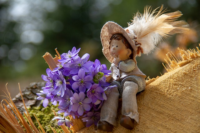Flower, Hepatica, Forest, Log, Figure, Boy, Nature