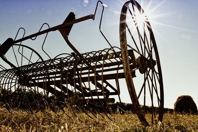 Heusammler, Agriculture, Hay, Antique
