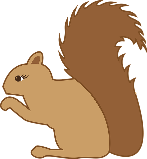 Squirrel, Forest Animal, Animal, Rodent, Hibernation