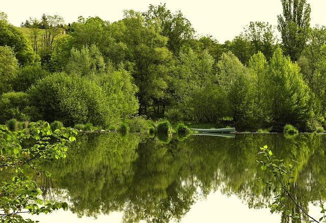 Loire, Retournac, River, High-loire, Auvergne