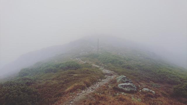 Hike, Mist, Hiking, Landscape, Fog, Nature, Scenery