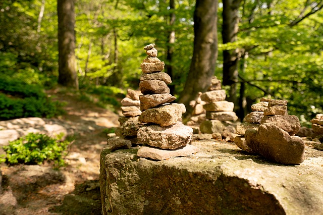 Nature, Stone, Tree, Forest, Cairn, Rock, Hiking, Away
