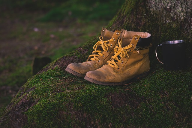 Boots, Shoes, Moss, Hiking Shoes, Worn, Used, Hiking