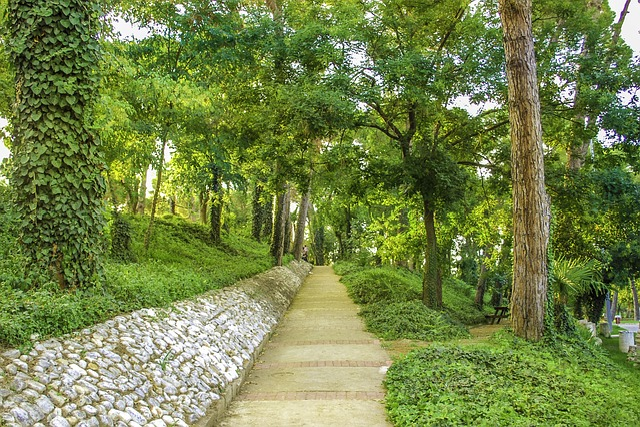 Park, Green, Turkey, Salihli, Hiking Trail