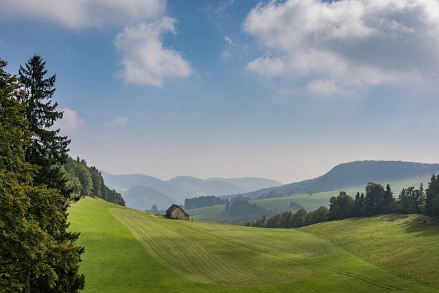 Nature, Panorama, Landscape, Tree, Grass, Hill, Sky