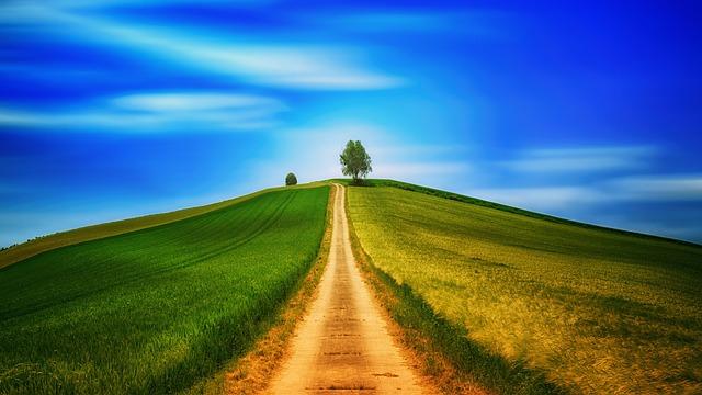 Away, Hill, Fields, Tree, Lane, Lonely, Sky, Landscape