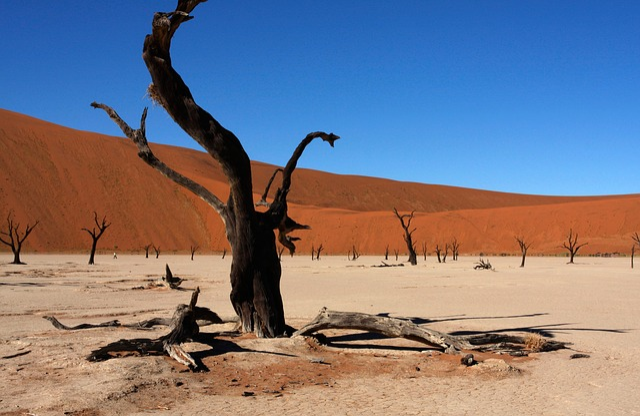 Namibia, Sossusvlei, Dunes, Nature, Hills