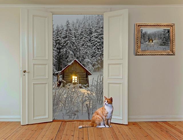 Room, Space, Door, Room Door, Hinged Door, Outlook