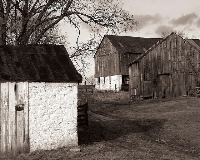 Antietam, Maryland, Historical, Black And White, Barn