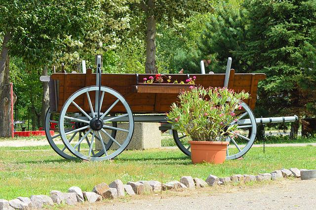 Cart, Old, Hay Wagon, Means Of Transport, Historically