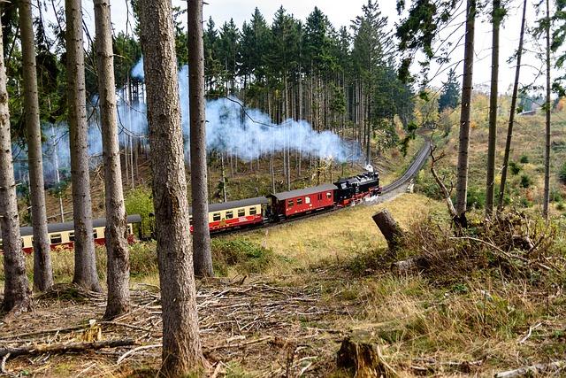 Steam Locomotive, In The Resin, Railway, Historically