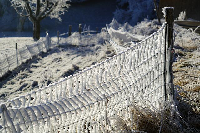 Fence, Post, Hoarfrost, Snow Crystals, Iced, Crystals