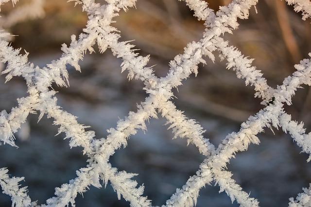 Frost, Winter, Snow, Iced, Hoarfrost, Eiskristalle, Ice