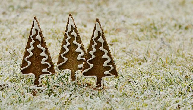 Trees, Gingerbread, Hoarfrost, Winter, Meadow, Frozen