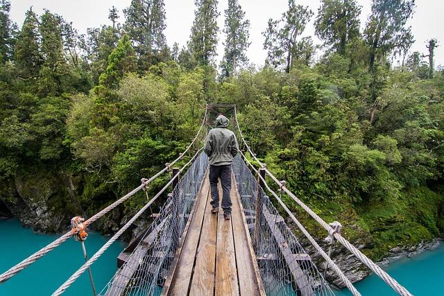 Bridge, Trekking, New Zealand, Hokitika Gorge, Nature