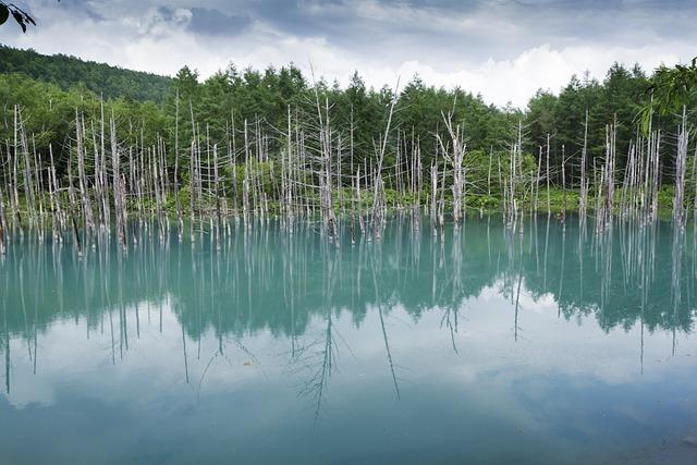 Blue Pond, Hokkaido, Japan, Lagoon, Lake, Japanese Lake