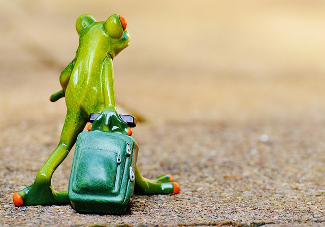 Frog, Farewell, Travel, Luggage, Holdall, Go Away