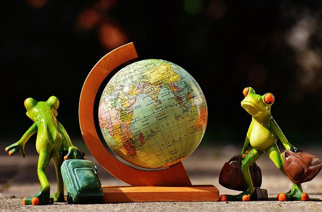 Frogs, Travel, Go Away, Holiday, Holidays