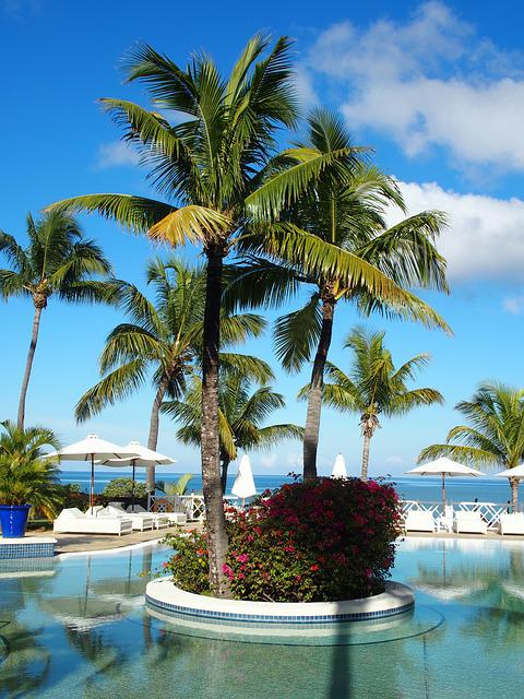 Mauritius, Pool, Summer, Swimming Pool, Swim, Holiday