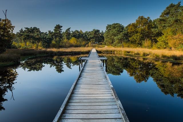 Maasduinen, Netherlands, Water, Holland, Mood, Holiday