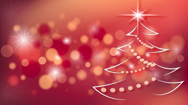 Christmas Tree, Christmas, Decoration, Holiday, Winter