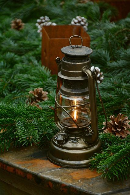 Lantern, Decoration, Advent, Holly, Pine Cones
