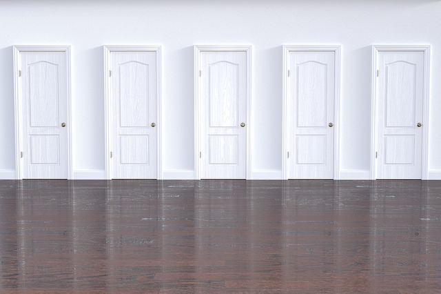 Door, Doorway, Interior Design, Entrance, Choice, Home