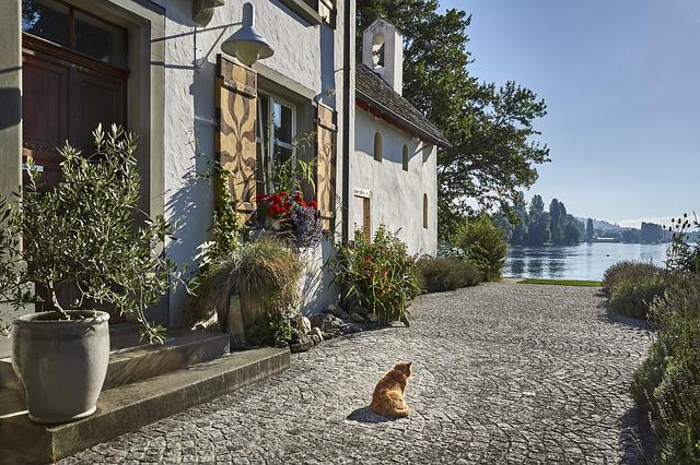 Architecture, Home, Cat, Island, Building, Old House