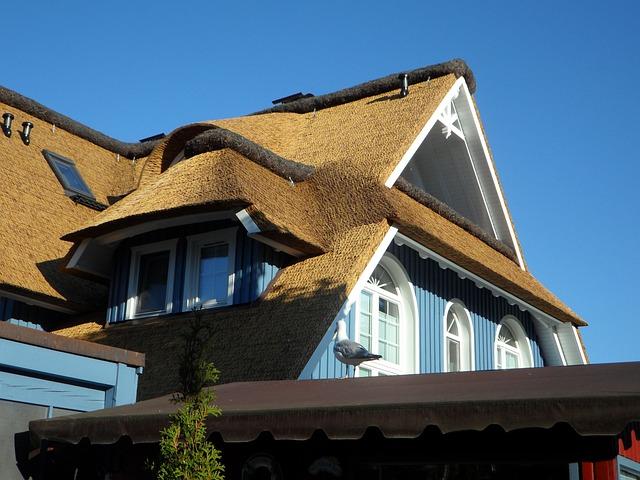 Reed, Home, Roof, Window, Darß, Baltic Sea, Facade