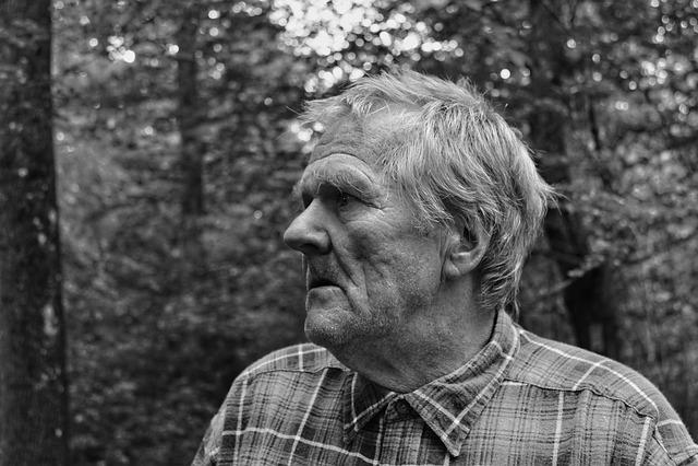Face, Portrait, Search, Seeking, Asking, Homeless, Man