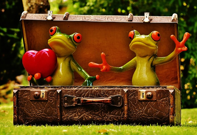 Frogs, Homesickness, Travel, Wanderlust, Luggage
