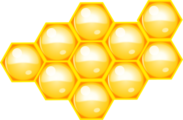 Bee, Beehive, Hive, Honey, Honeycomb, Nature, Yellow