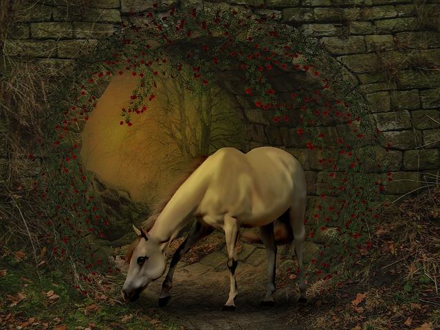 Horse, Photoshop Manipulation, Fantasy, Freedom, Hope