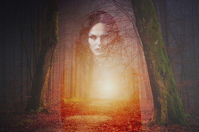 Forest, Ghost, Gothic, Horror, Scary, Fear, Spooky