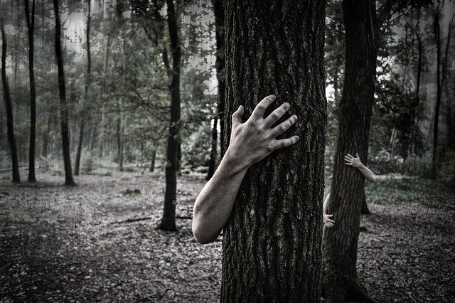 Hands, Trunk, Creepy, Zombies, Forest, Horror, Scary