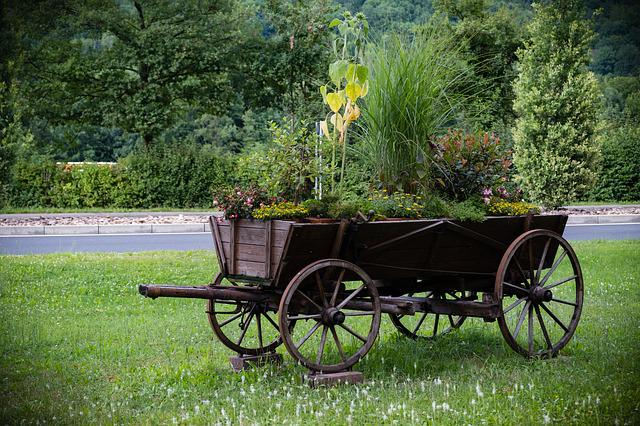 Dare, Coach, Wheel, Wagon, Horse Drawn Carriage, Old