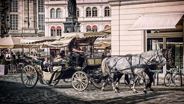 Coach, Horse Drawn Carriage, Horses, Team, Wagon