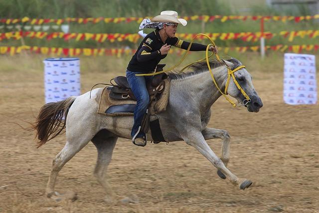 Horse, Rider, Sports, Animals, Horsehead, Equestrian