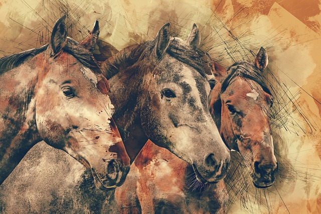 Horses, Horse Head, Animals, Mammal, Nature, Equestrian