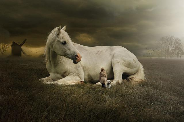Horse, Mammal, Animal, White Horse, Horse Laying Down