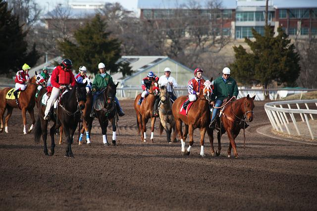 Horses, Horse Racing, Racetrack, Horse Race, Jockey