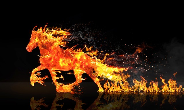Fire Horse, Horse Running, Wastage, Horse, Fires