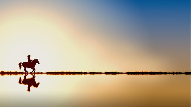 Reiter, Horse, Water, Sunset, Dawn, Sky, Sun, Waters