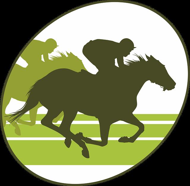 Horse Racing, Horse, Equine, Jumper, Horseback Riding