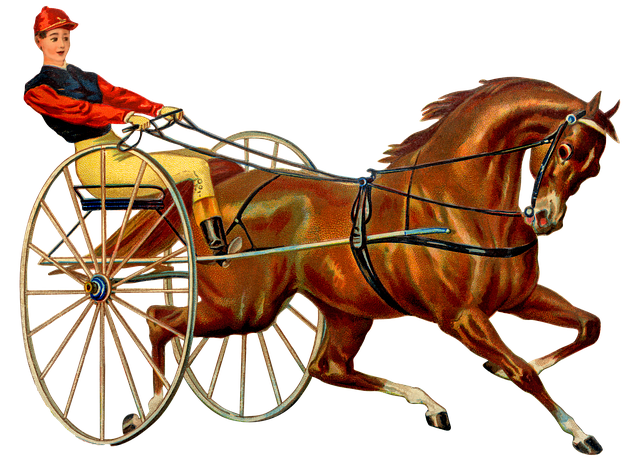 Vintage Horse Race, Harness Racing, Horserace, Jockey