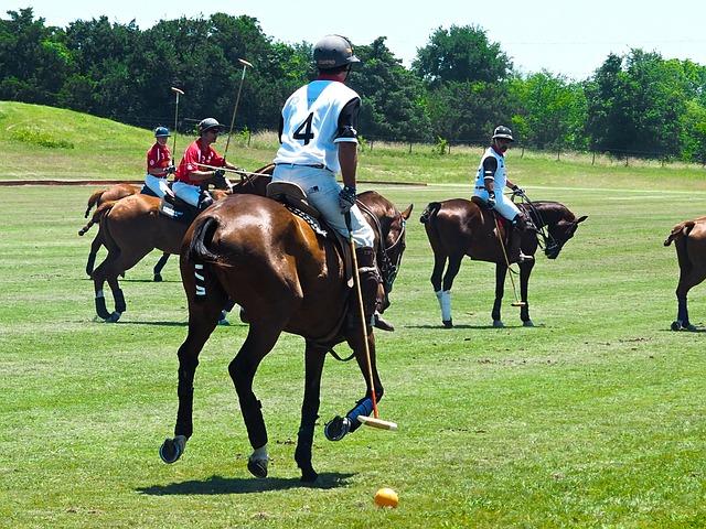 Derby, Austin, Polo, Horses, Sports