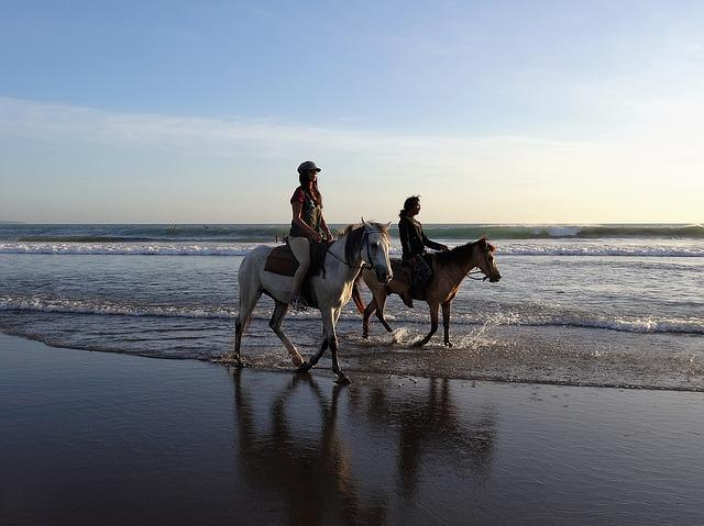 Walk On The Beach, Horses, Bali, Beach, Sea