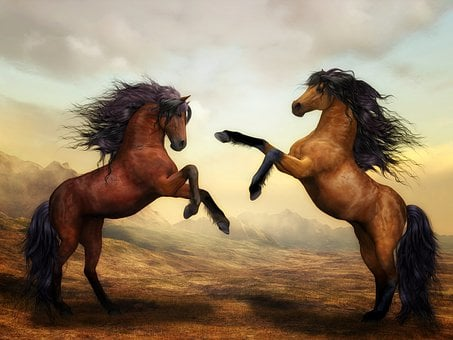 Horses, Wild Horses, Digital Art, Nature, Landscape